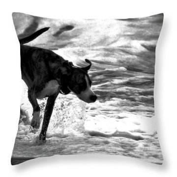 Surfer Bird Throw Pillow