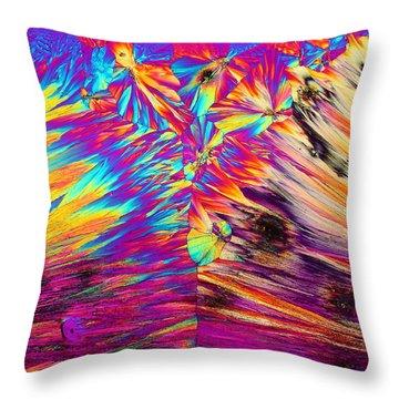 Surfin' Safari Throw Pillow