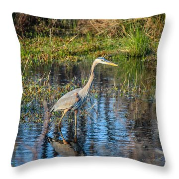 Surprise On The Trail Throw Pillow