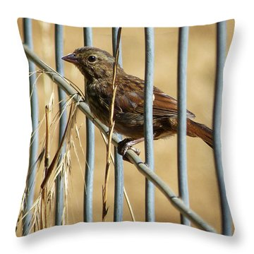 Surprise Visit Throw Pillow