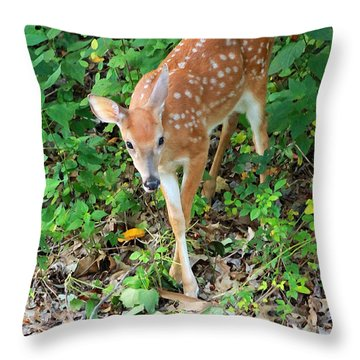 Surprised Fawn Throw Pillow