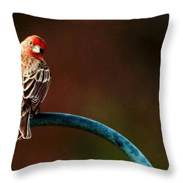 Surreal Purple Finch Throw Pillow