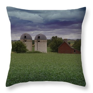 Surrounded By Fields Throw Pillow by Rebecca Davis