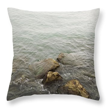 Surrounded Throw Pillow by Margie Hurwich