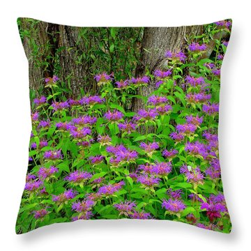 Surrounded Throw Pillow by Rodney Lee Williams
