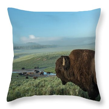 Morning Throw Pillows