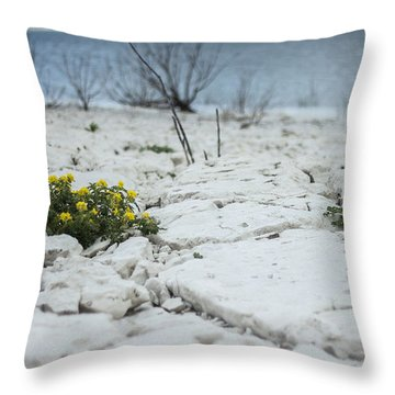 Throw Pillow featuring the photograph Survival by Amber Kresge