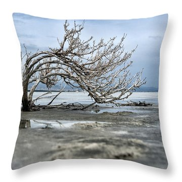 A Smal Giant Bush Throw Pillow