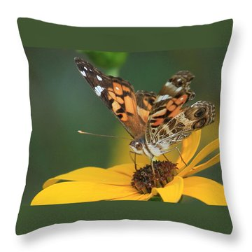 Susan Painted Lady Throw Pillow