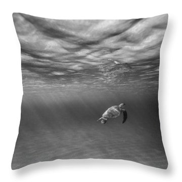 Suspended Animation. Throw Pillow