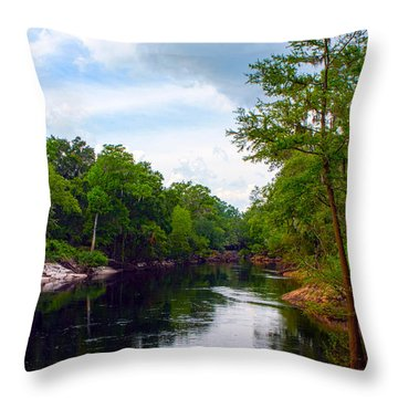 Suwannee Overlook Throw Pillow