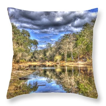 Throw Pillow featuring the photograph Suwannee River Scene by Donald Williams