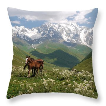 Svaneti  Throw Pillow