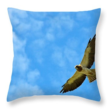 Swainson's Hawk Snake River Birds Of Prey Natural Conservation Area Throw Pillow