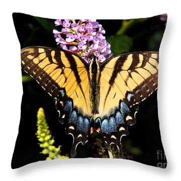 Swallowtail Beauty Throw Pillow