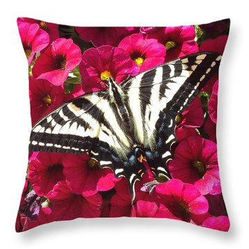 Swallowtail Butterfly Full Span On Fuchsia Flowers Throw Pillow