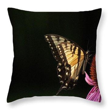 Swallowtail In The Light Throw Pillow by Elsa Marie Santoro