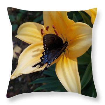 Throw Pillow featuring the photograph Swallowtail On Asiatic Lily by Kathryn Meyer