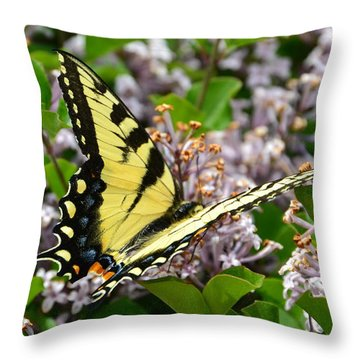 Swallowtail On Lilacs Throw Pillow