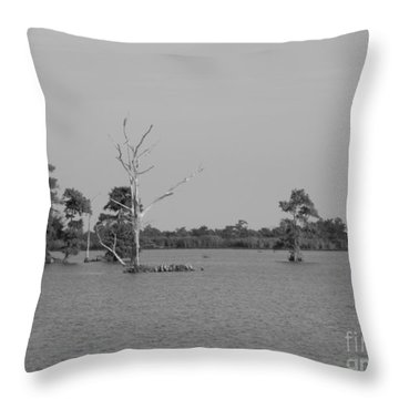 Throw Pillow featuring the photograph Swamp Cypress Trees Black And White by Joseph Baril