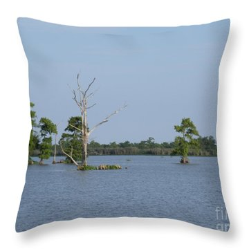 Throw Pillow featuring the photograph Swamp Cypress Trees by Joseph Baril