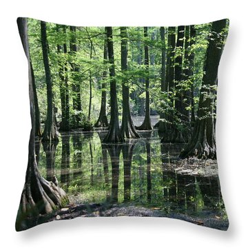 Swamp Land Throw Pillow