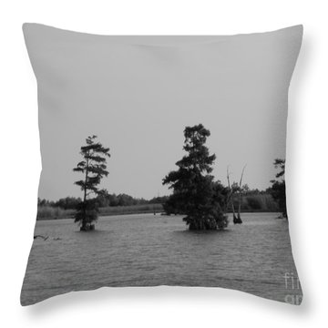 Throw Pillow featuring the photograph Swamp Tall Cypress Trees Black And White by Joseph Baril