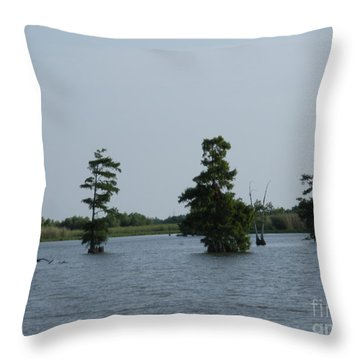 Throw Pillow featuring the photograph Swamp Tall Cypress Trees  by Joseph Baril