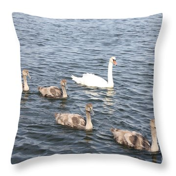 Swan And His Ducklings Throw Pillow by John Telfer