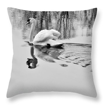 Swan Elegance Throw Pillow