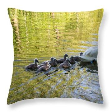 Swan Family Throw Pillow by Michael Mogensen