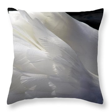 Swan Feathers Throw Pillow
