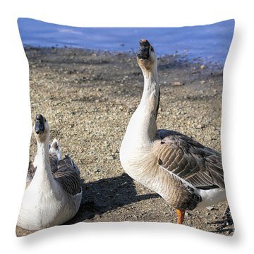 Brown African Geese Throw Pillow