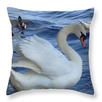 Swan Grace Throw Pillow