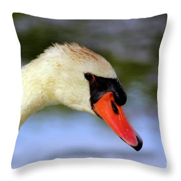 Swan Head Shot Throw Pillow