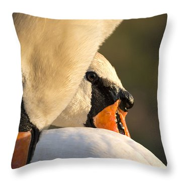Swan Heads Throw Pillow