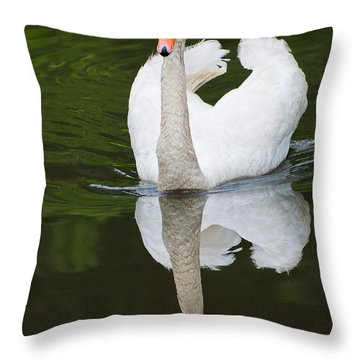 Swan In Motion Throw Pillow by Gary Slawsky