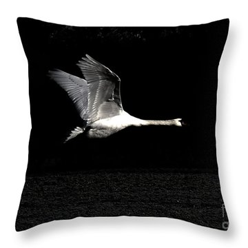 Swan In The Night Throw Pillow