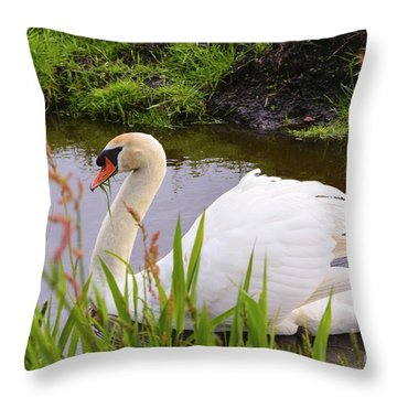 Swan In Water In Autumn Throw Pillow