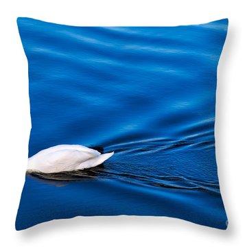Swan Lake Throw Pillow by Adrian Evans