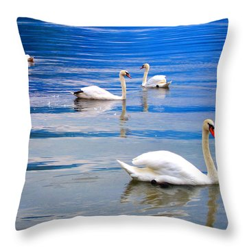 Swan Lake Throw Pillow by Andreas Thust