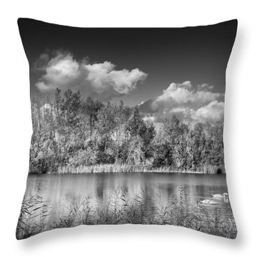 Throw Pillow featuring the photograph Swan Lake by Gary Gillette