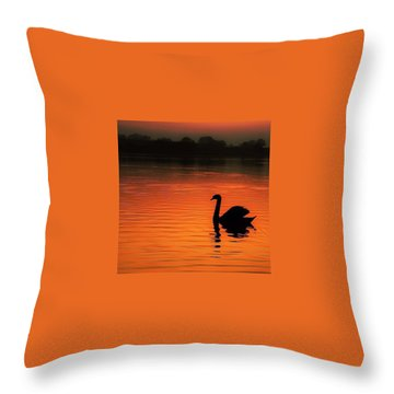 Swan Lake Throw Pillow by Phil Tomlinson