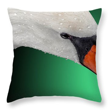 Swan Shine 2 Throw Pillow