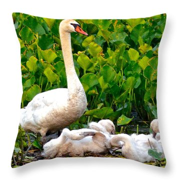 Swan Song Throw Pillow by Frozen in Time Fine Art Photography
