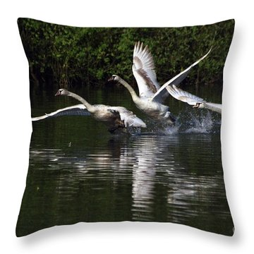 Swan Take-off Throw Pillow