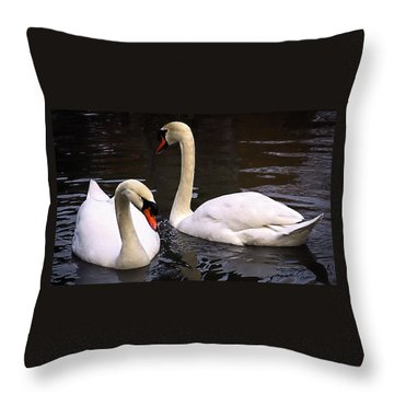Throw Pillow featuring the photograph Swan Two by Elf Evans