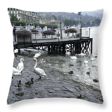 Swans And Ducks In Lake Lucerne In Switzerland Throw Pillow by Ashish Agarwal