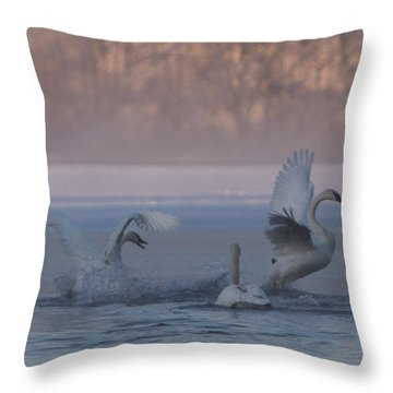 Swans Chasing Throw Pillow by Patti Deters