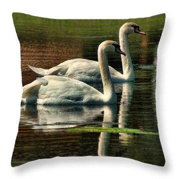 Swans Cruising Throw Pillow